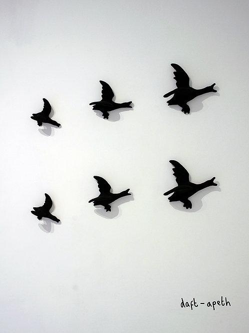 flying dacks