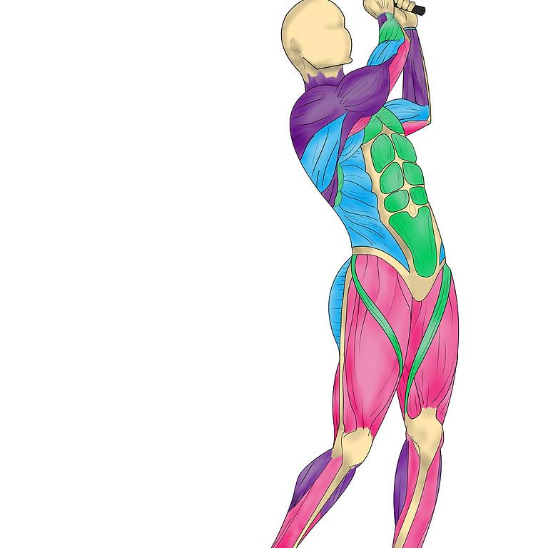 Stop Back Pain University, Part 3 Flexibility