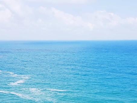 #2 Bernie's Journeys: FEEL SEA