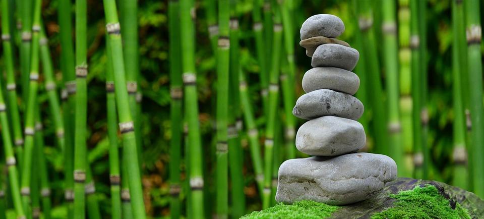 Bamboo Rocks