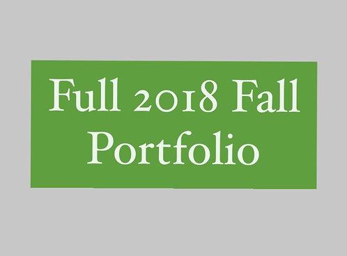 Full 2018 Winter Portfolio