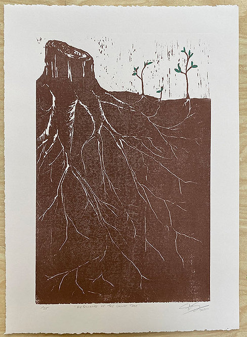 "Sam Salazar ""Resilience of the Locust Tree"""