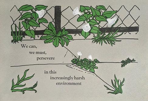 "Sara K. Dunn ""Persevering Plants"""