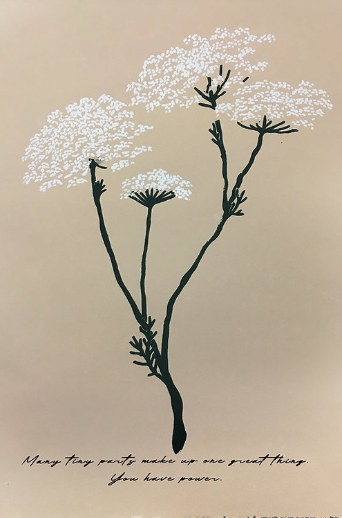 "Allyson Church ""Queen Anne's Lace"""