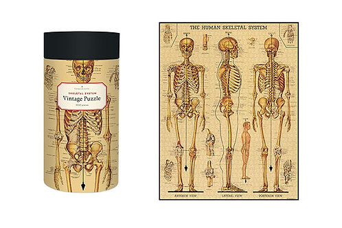 Vintage Skeleton Puzzle, 1000 pieces