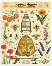 bee-honey-puzzles-cavallini-museum-outle