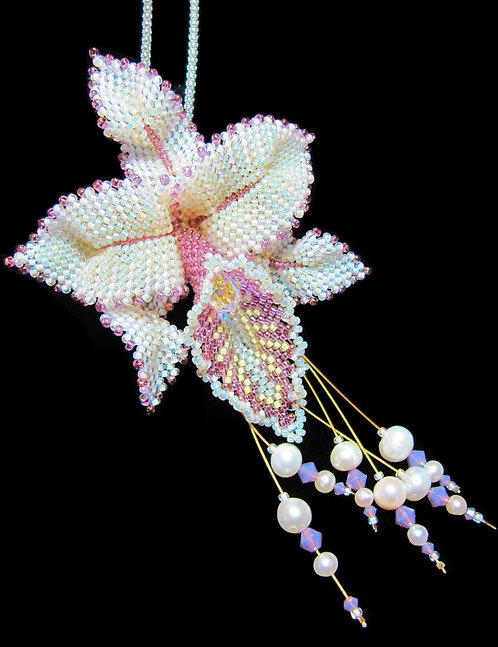 Saturday, February 27th: Cattleya Orchid