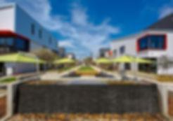 Campus Drive 2.JPG