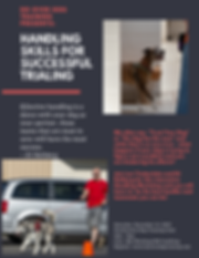 DO OVER DOG TRAINING PRESENTS_ (1).png