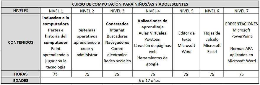 NIVELES COMPUTACION.PNG