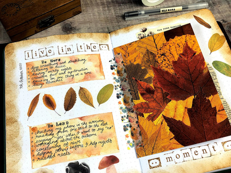 Using your Journal to Reflect
