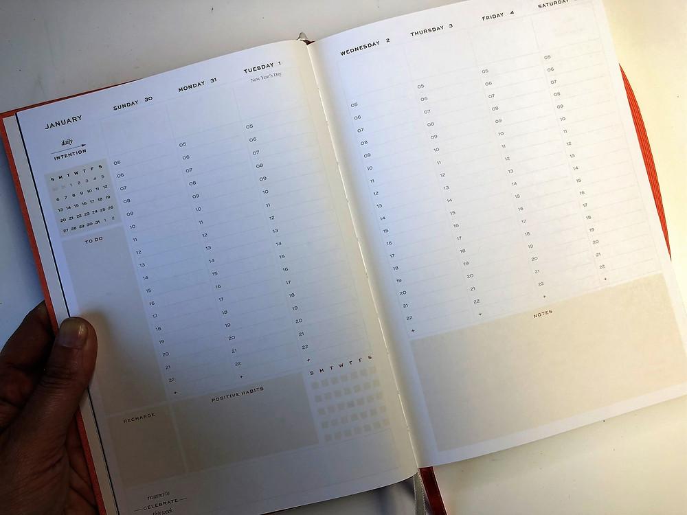 Ponderlily Daily Planner
