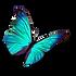 Papillon Bleu Clair 2 PNG.png