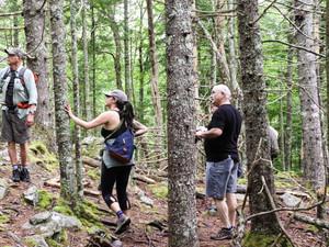 Hike Hobson's Lake Trail