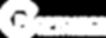 proptonics logo