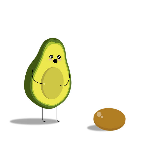 Avocado_Baby
