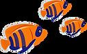 דגים.png