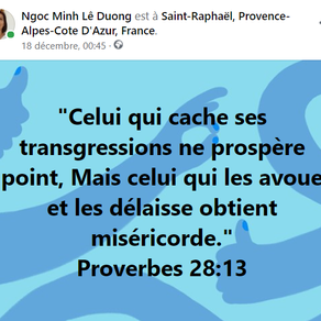 Proverbes 28:13