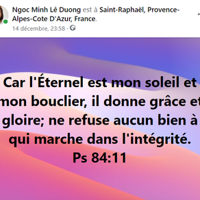 Psaumes 84:11