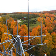 fall pic 1.jpg