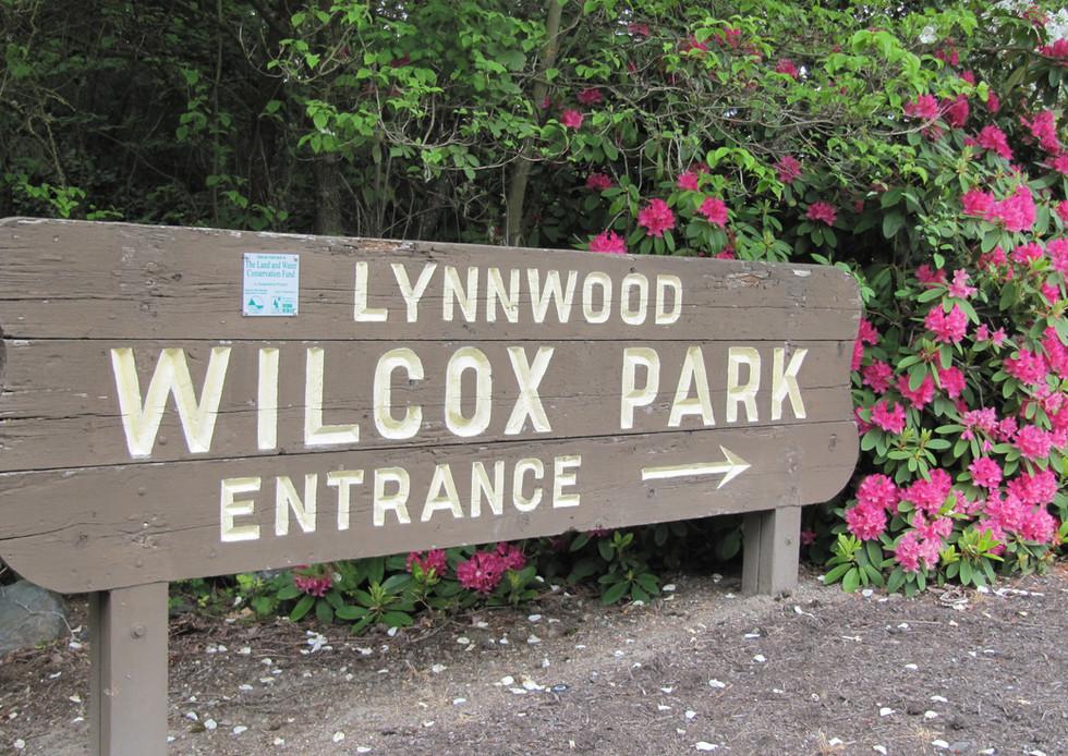 Lynnwood 3