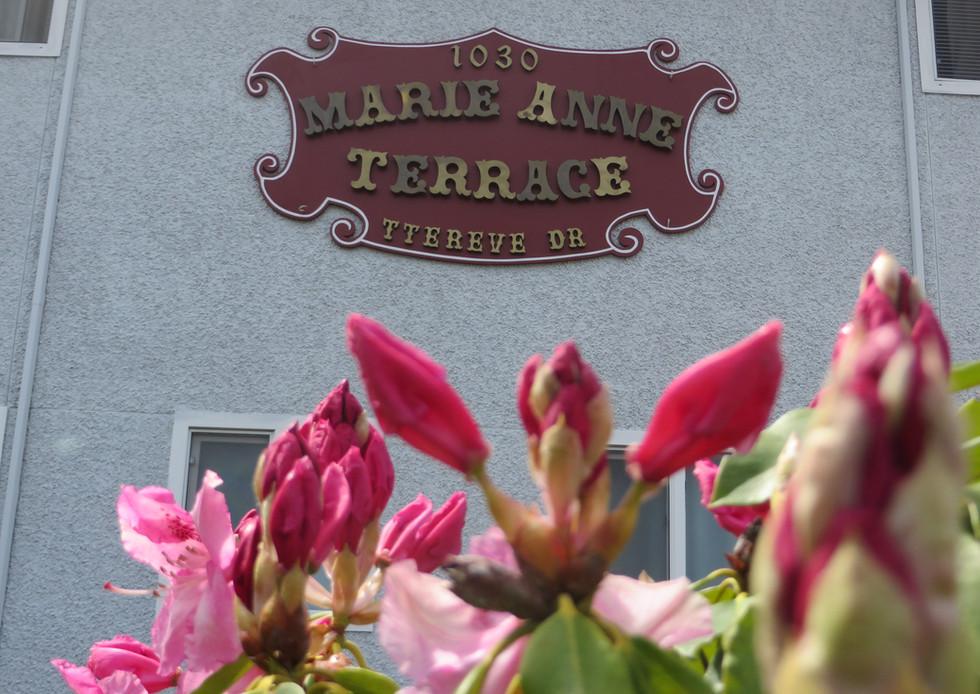 Marie Anne Terrace 13