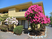 Marnice Apartments in Everett WA