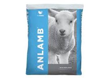 Anlamb Milk Replacer 1kg & 2kg