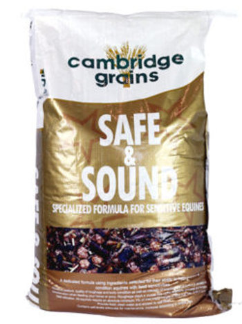 Safe & Sound 20kg