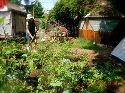Grateful Gardener