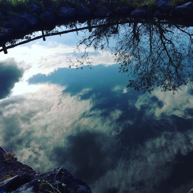 フローフォームの池と空