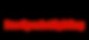 Pro+Sports+Lighting-logo(2).png