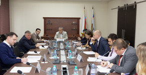 PLASTMASS GROUP TOOK PART IN THE MEETING OF THE CHEMICAL AND PETROCHEMICAL WORKING GROUP