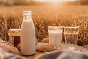 Plastics for Dairy Industry