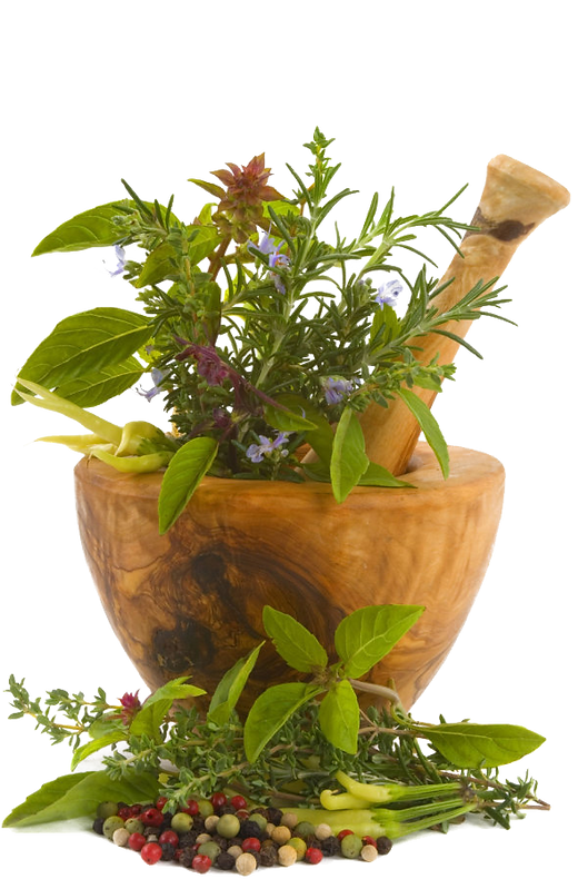 holistic herbal medicine