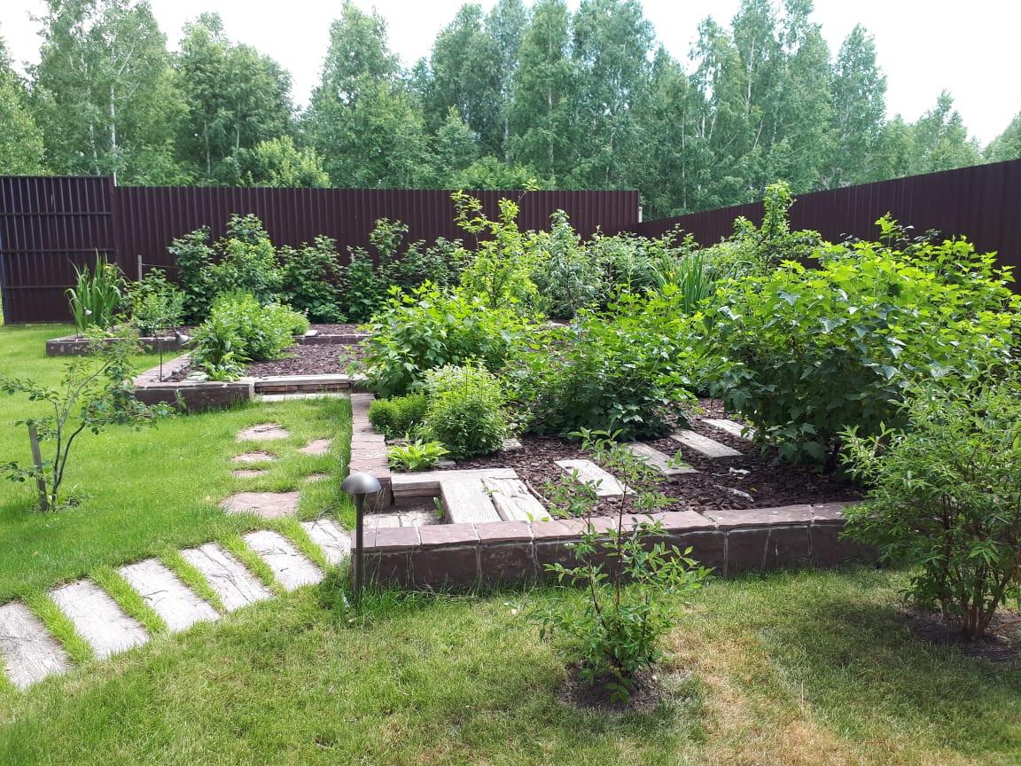 плодовый сад 2019г