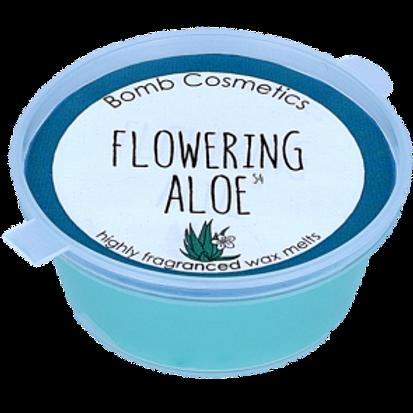 FLOWERING ALOE Cialda profumata BOMB COSMETICS