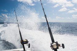 Fishing St. Croix - Deep Sea Island Charters-9