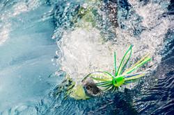 Fishing St. Croix - Deep Sea Island Charters-40