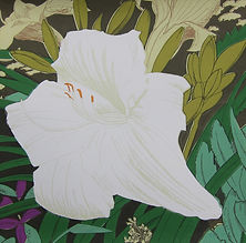 Rory Brooke, Hemerocallis Screenprint.jpg