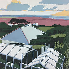 Rory Brooke St Agnes View.JPG