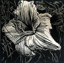 Rory Brooke, Hemerocallis Linocut.jpg