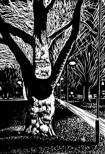 Rory Brooke Forked Tree Lino Draft 26th