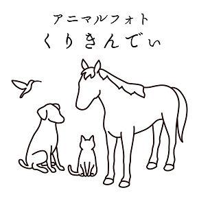 くりきんでぃロゴ正方形 のコピー.jpg