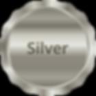 Silver Sponsor.png