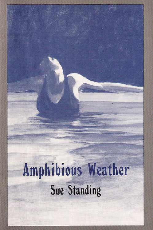 Amphibious Weather, by Sue Standing