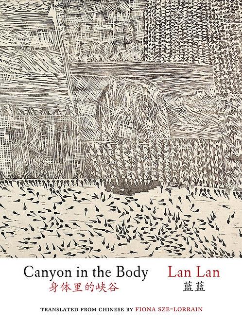 Canyon in the Body, by Lan Lan