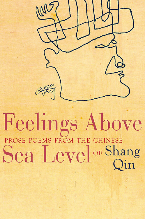 Feelings Above Sea Level, by Shang Qin