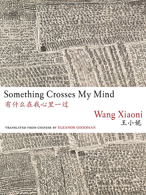 Something Crosses My Mind, by Wang Xiaoni
