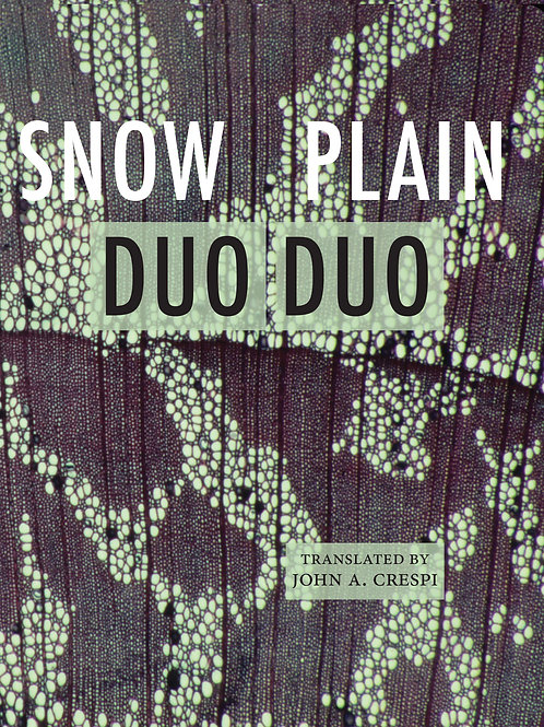 Snow Plain, by Duo Duo